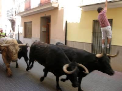 Castellnovo cerró, con éxito de participación, su semana grande